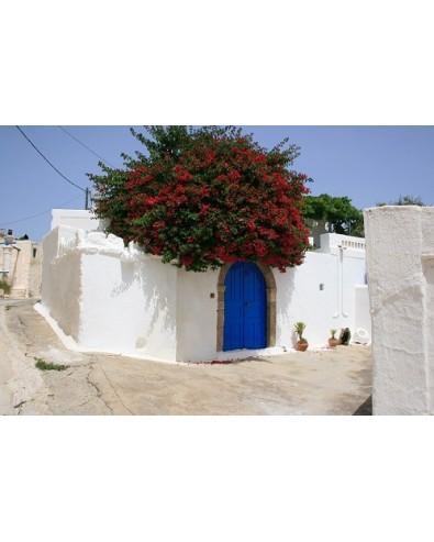voyage grèce Ile grecque de Rhodes autotour 8 jrs 7 nts