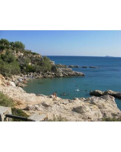 voyage Grèce Ile grecque de Lemnos autotour  8 jrs 7 nts -  3/4*