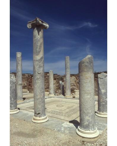 Visite de Delos départ du port de Mykonos 1/2 jr le matin